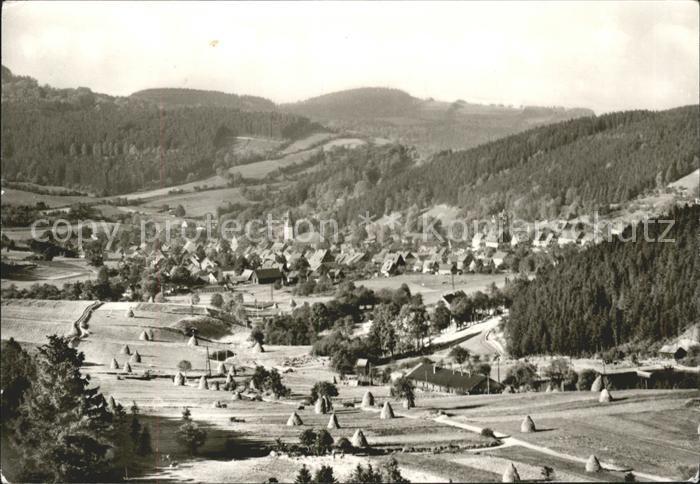 Geising Erzgebirge Totalansicht / Geising Osterzgebirge /Saechsische Schweiz-Osterzgebirge LKR