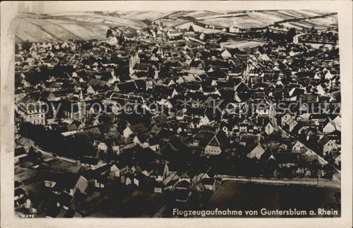 Guntersblum Fliegeraufnahme / Guntersblum /Mainz-Bingen LKR