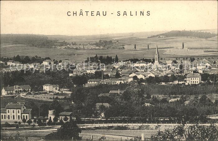 Chateau-Salins Vue panoramique / Chateau-Salins /Arrond. de Chateau-Salins