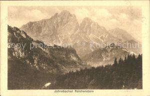 Johnsbach Steiermark Reichenstein Panorama Ennstaler Alpen Kat. Johnsbach