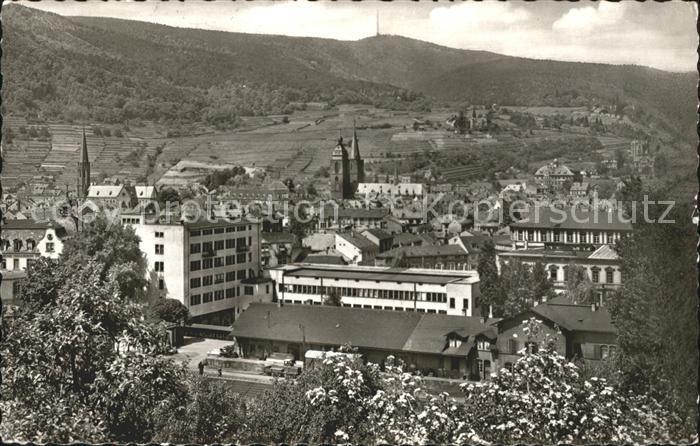 Neustadt Weinstrasse Panorama Perle der Pfalz Kat. Neustadt an der Weinstr.