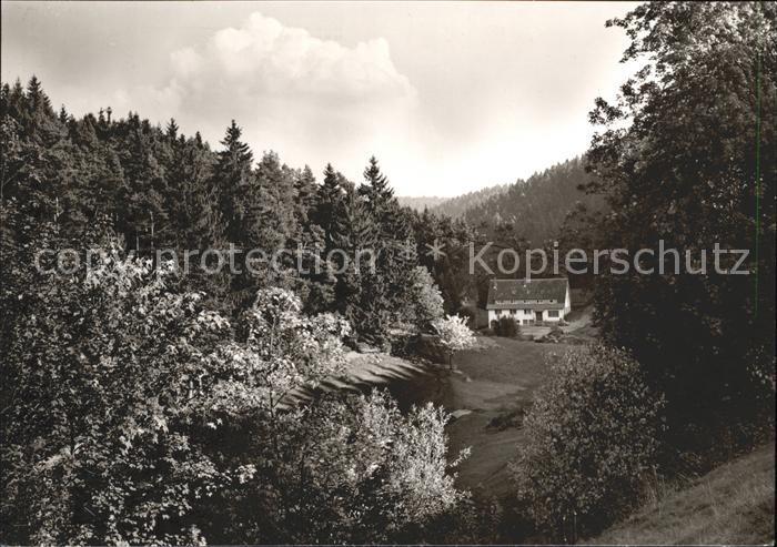 Besenfeld Freizeitheim Schwarzwaldmuehle Kat. Seewald