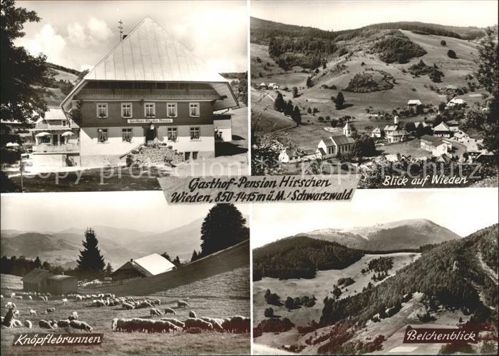 Wieden Schwarzwald Belchenblick Knoepfelsbrunnen Gasthof zum Hirschen / Wieden /Loerrach LKR