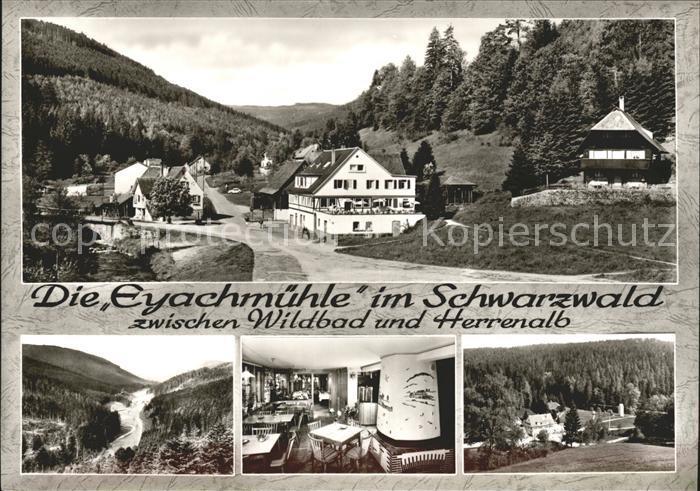 Wildbad Schwarzwald Gasthaus Pension Eyachmuehle Details Kat. Bad Wildbad