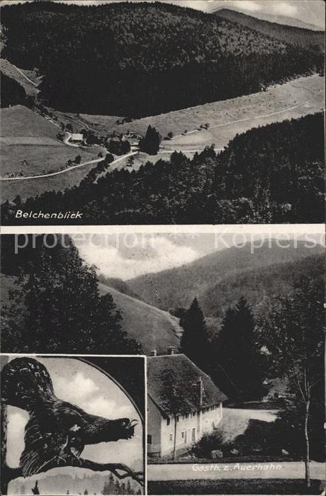 Badenweiler Belchenblick Gasthaus zum Auerhahn Kat. Badenweiler