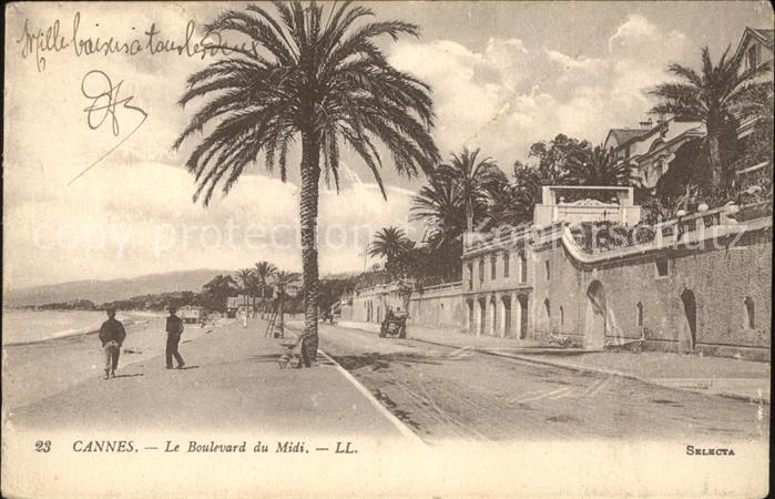 Cannes Alpes Maritimes Boulevard du Midi Palmier Kat. Cannes