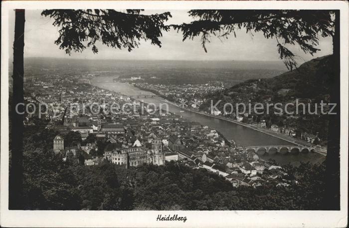 Heidelberg Neckar Totalansicht Kat. Heidelberg