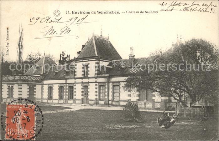 Senonches Chateau de Sauceux Stempel auf AK Kat. Senonches