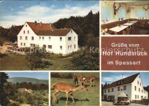 Aschaffenburg Main Gasthaus Pension Hundsrueck Kat. Aschaffenburg