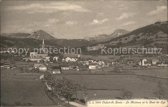 Chatel St Denis Panorama Le Moleson et la Dent de Lys Kat. Chatel St Denis