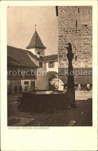 Kyburg Schlosshof Brunnen Kat. Kyburg