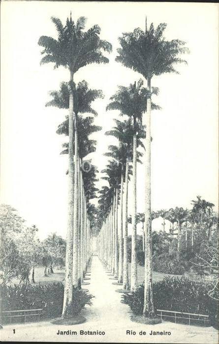Rio de Janeiro Jardim Botanico Kat. Rio de Janeiro