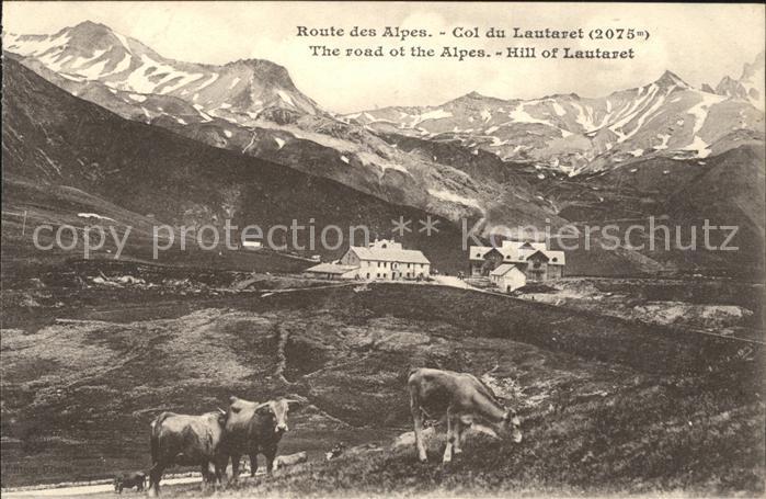 Le Lautaret Col du Lautaret Route des Alpes Vaches Kat. Saint Vincent les Forts