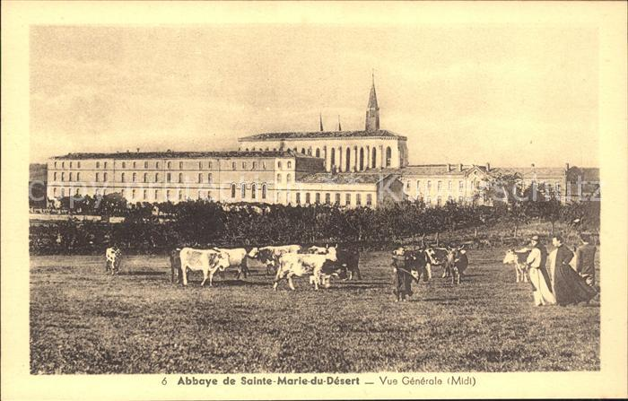 Bellegarde-Sainte-Marie Abbaye de Sainte Marie du Desert Vaches / Bellegarde-Sainte-Marie /Arrond. de Toulouse