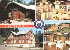 Harrachov Harrachsdorf Hotel Lesni / Harrachsdorf /