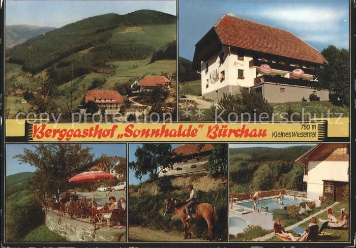 Buerchau Berggasthof Sonnhalde Pferd Schwimmbad Kat. Buerchau
