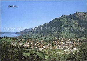 Goldau Panorama Kat. Goldau