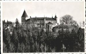 Oron la Ville Chateau  Kat. Oron la Ville