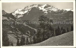 Lenk Simmental Wildstrubel Kat. Lenk Simmental