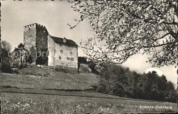 Habsburg Schloss Habsburg Kat. Habsburg