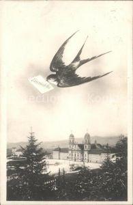 Einsiedeln SZ Kloster Schwalbe / Einsiedeln /Bz. Einsiedeln