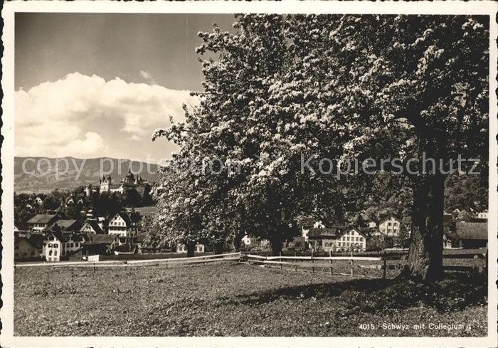 Schwyz Collegium Kat. Schwyz