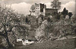 Oberkirch Baden Schauenburg Schlosswirtschaft Kat. Oberkirch
