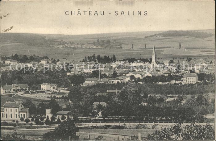 Chateau Salins Panorama Kat. Chateau Salins