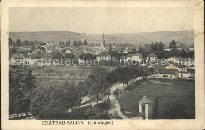 Chateau Salins Vue generale Kat. Chateau Salins