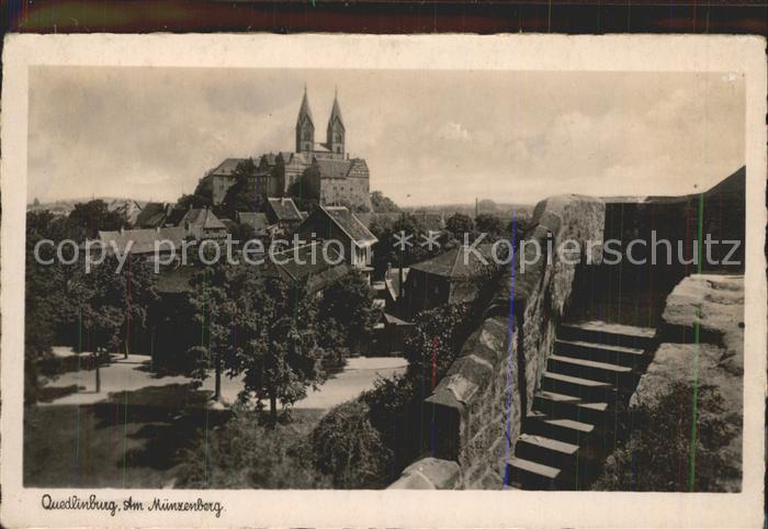 Quedlinburg Am Muenzenberg Blick zum Schloss Kat. Quedlinburg