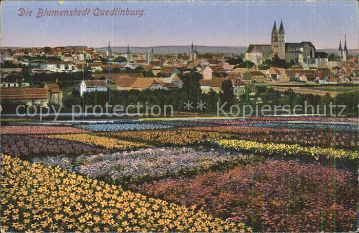 Quedlinburg Die Blumenstadt Blick zum Schloss Kat. Quedlinburg
