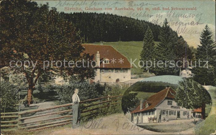 Sirnitz Gaestehaus zum Auerhahn / Badenweiler /Breisgau-Hochschwarzwald LKR