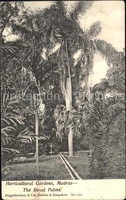 Madras Tamil Nadu Horticultural Gardens Kat. Madras