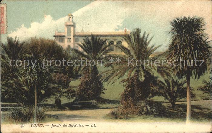 Tunis Jardin du Belvedere  Kat. Tunis