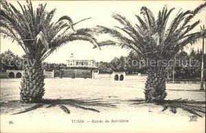 Tunis Entree Belvedere  Kat. Tunis
