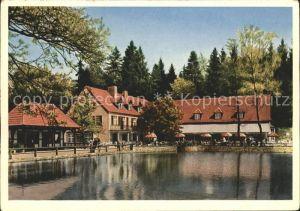 Leopoldstal Lippe Waldhotel und Pension Silbermuehle Kat. Horn Bad Meinberg