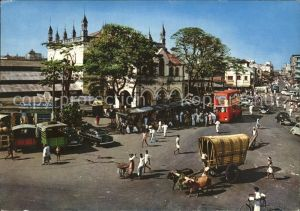 Colombo Ceylon Sri Lanka Street scene Markt Tiere  Kat. Colombo