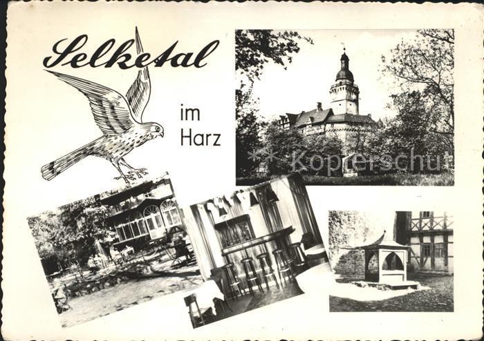 Falkenstein Harz Selketal HO Gasstaette Zum Falken Kat. Falkenstein Harz 0
