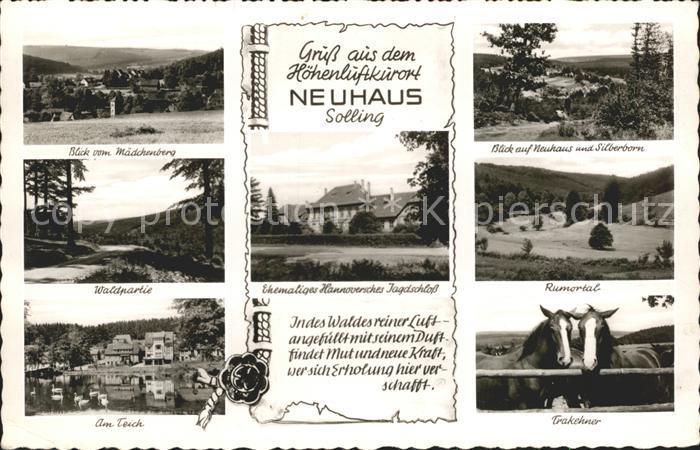 Neuhaus Solling Maedchenberg Silberborn Waldparte Ehem Hann Jagdschloss Rumortal Am Teich Trakehner Kat. Holzminden