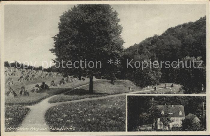Dresden Kaitzbachtal Talschaenke Kat. Dresden Elbe Nr. dk75446 ...