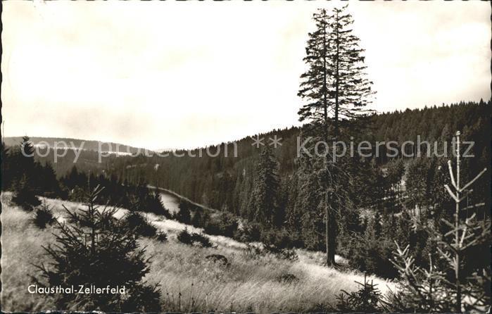 Clausthal Zellerfeld Landschaft Oberharz Kat. Clausthal Zellerfeld