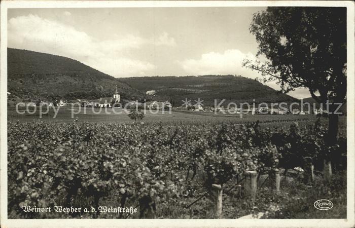 Weyher Pfalz Panorama Weinort Kat. Weyher in der Pfalz