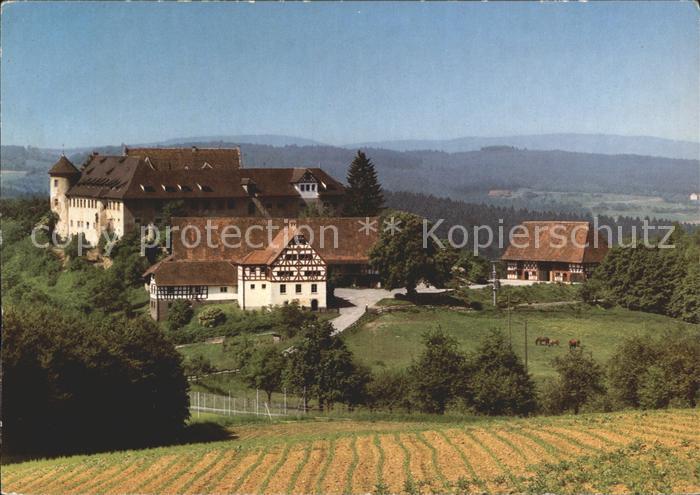 Hohenfels Stockach Schule Schloss Salem Zweigschule Burg Hohenfels / Hohenfels /Konstanz LKR