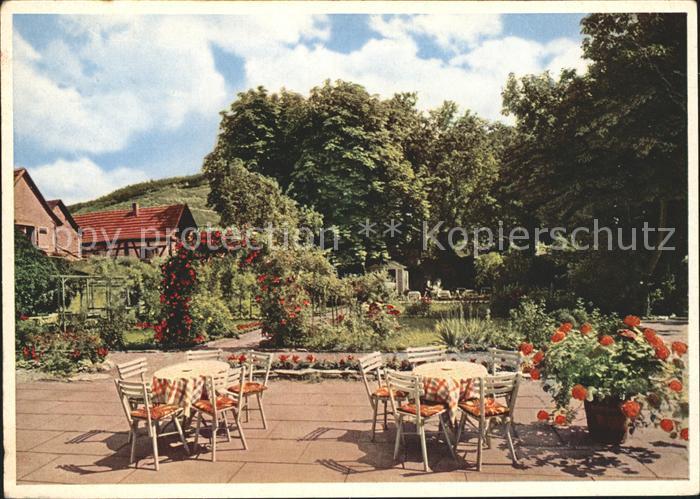 Walporzheim Rosengarten des Hotels Sanct Peter Kat. Bad Neuenahr Ahrweiler