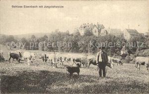 Lauterbach Hessen Schloss Eisenbach mit Jungvieweide Kat. Lauterbach (Hessen)