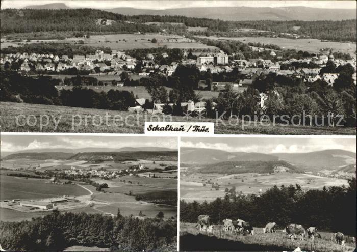 Schalkau Panorama Landschaft Kuehe Kat. Schalkau