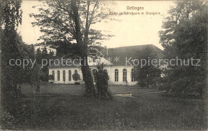 Oettingen Partie im Schlosspark mit Orangerie Kat. Oettingen i.Bay.