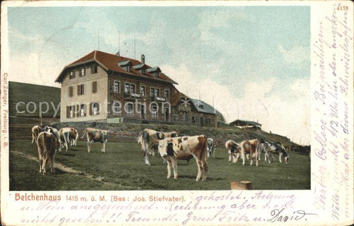 Belchen Baden Belchenhaus Berggasthof Viehweide Kuehe Kat. Neuenweg