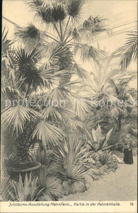 Gartenbau Mannheim der artikel mit der oldthing id 23729389 ist aktuell ausverkauft