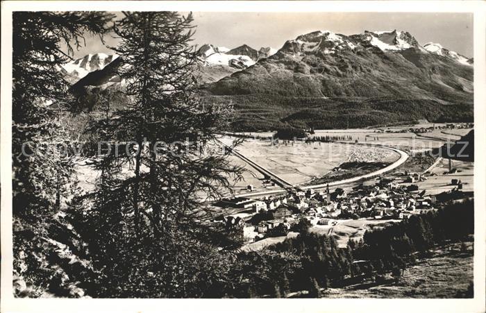 Samaden Panorama Engadin mit Berninagruppe Kat. Maloja
